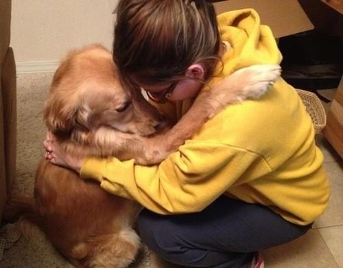 aprender-cachorros-4 (1).jpg