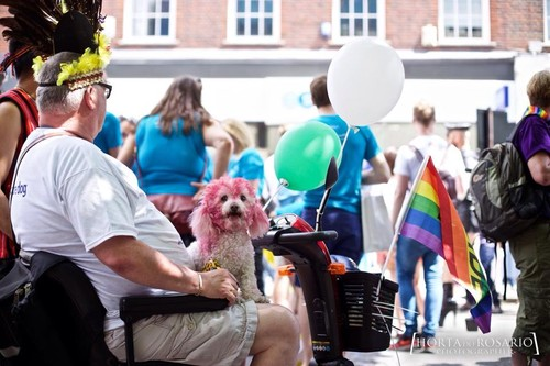 london pride 2015 parade 6.jpg