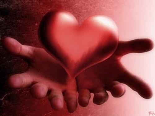 Amor e paixao (54).jpg