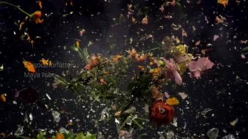 jarra de flores in. downvids.net.jpg