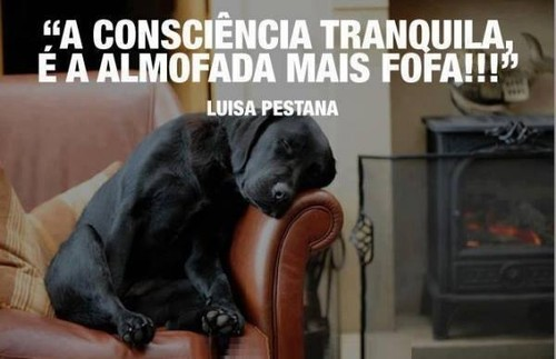 consciência2.jpg