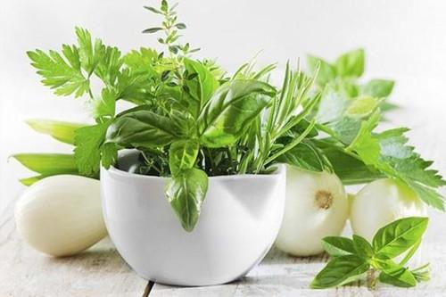 salada-de-ervas-facil-1-size-3.jpg