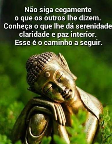 FB_IMG_1470514658191.jpg