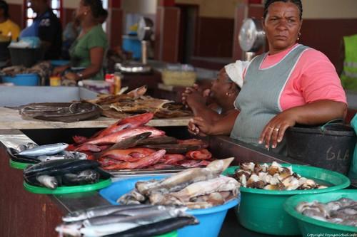 sao-vicente-mercado-de-peixe-mindelo-198.jpg