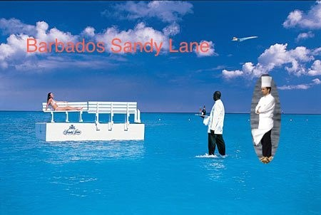 sandy-lane-service.jpg