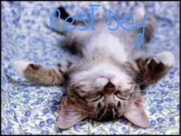 rest day.jpg