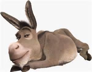 1 burro.jpg