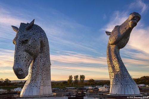 16555-650-1461654758-giant-horses-01.jpg