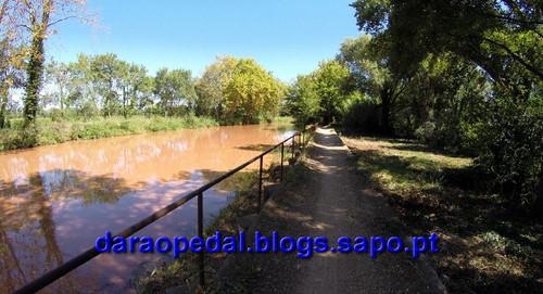 Canal_midi_dia_04_17.JPG