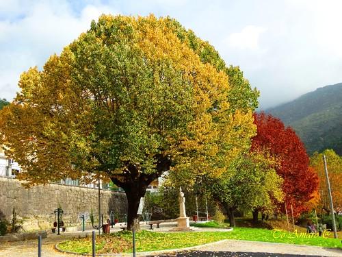 Fotos de Outono !!! 009.jpg