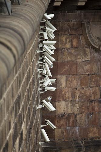 3 jakub-geltner-nests-security-cameras-in-nature-s