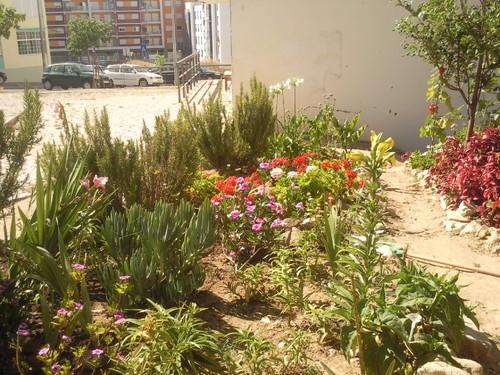 """ Jardim de D. Vanda"" Foto original de DAPL 2015.jpg"