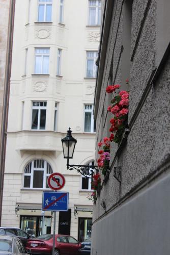 IMG_1269 Praga