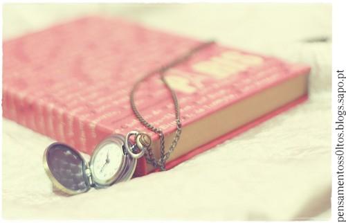 Querido diário.jpg