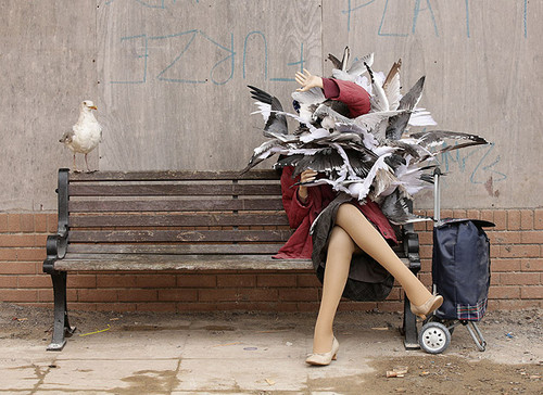 banksys-dismaland pombos.jpg