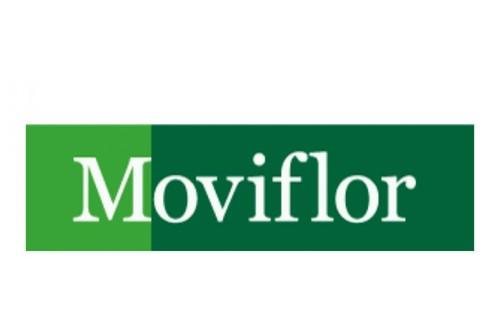 Moviflor Logo