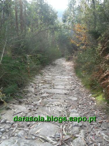 Trilho_Eiras_Famalicao_41.JPG
