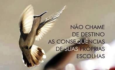FB_IMG_1465052682545.jpg