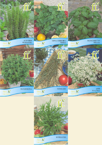 sementes planta aromáticas.png