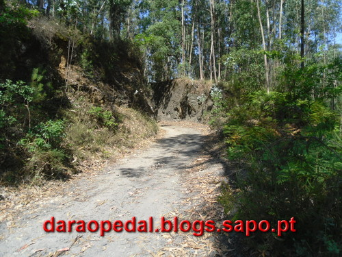Trilho_Mineiro_20.JPG