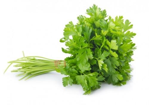 Salsa-uma-erva-indispensável3.jpg
