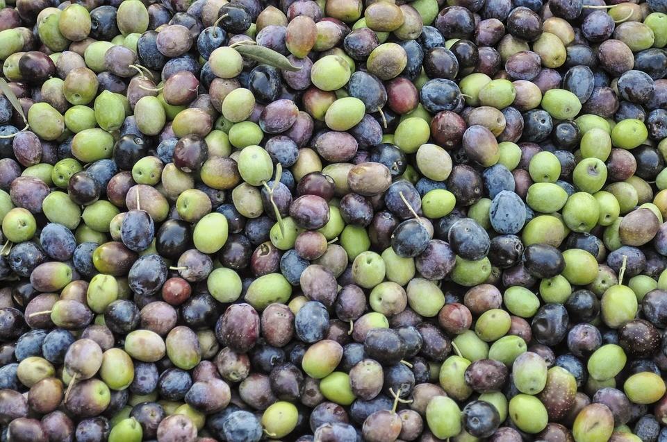 olives-1307154_960_720.jpg