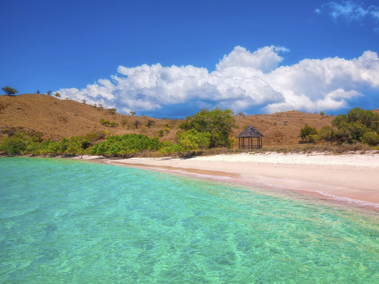 pink-beaches-komodo-beach-cr-getty-451339933.jpg