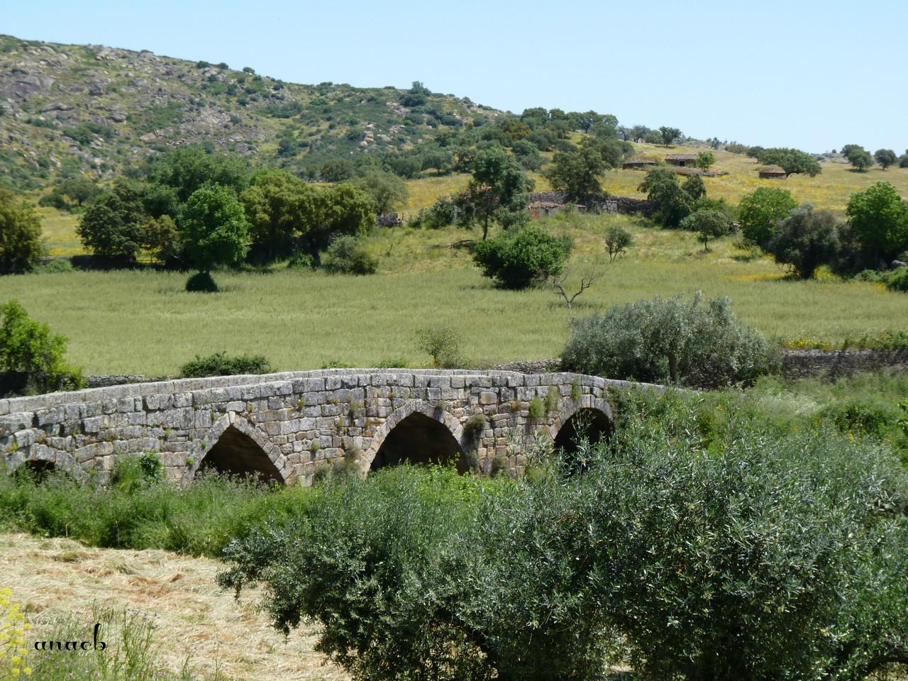 Idanha-a-Velha (117) Ponte romana.jpg