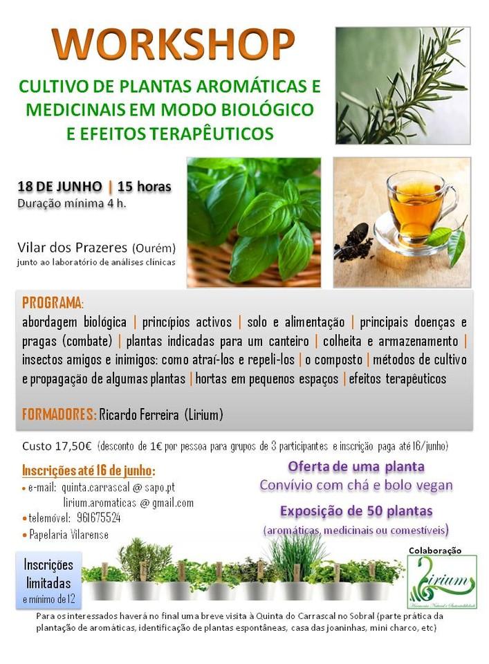 WS aromáticas (Vilar).jpg