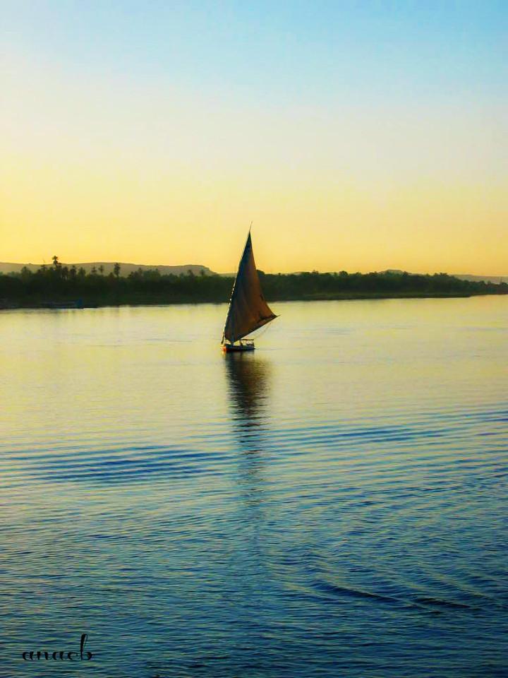 ao acaso #16 faluca no rio Nilo, em Assuão, Egipt