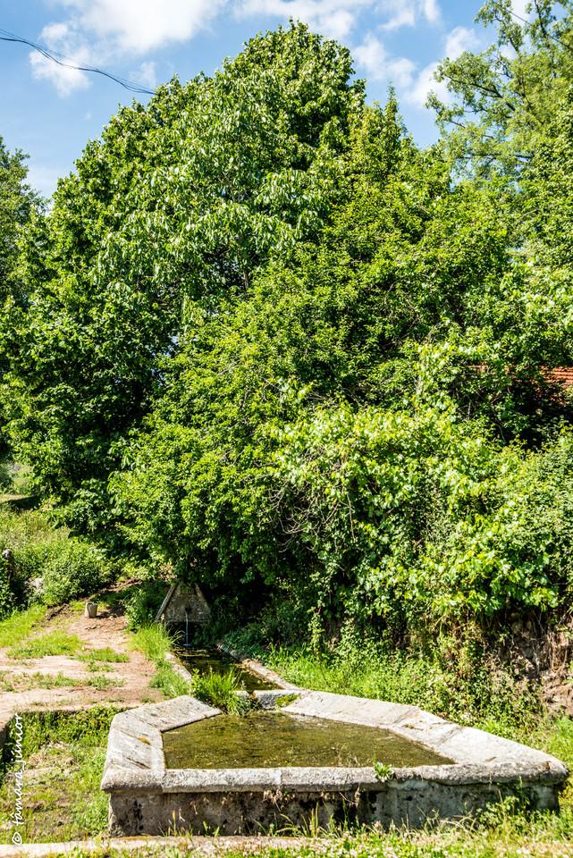 2015 - Cascata de Fírvidas (Montalegre) (219).jpg