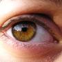 Almond_eyes.JPG