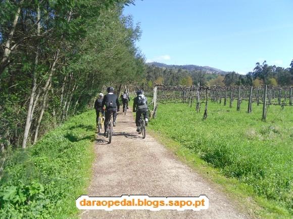 GeoBTT_Ecopista_Ponte_Lima_09