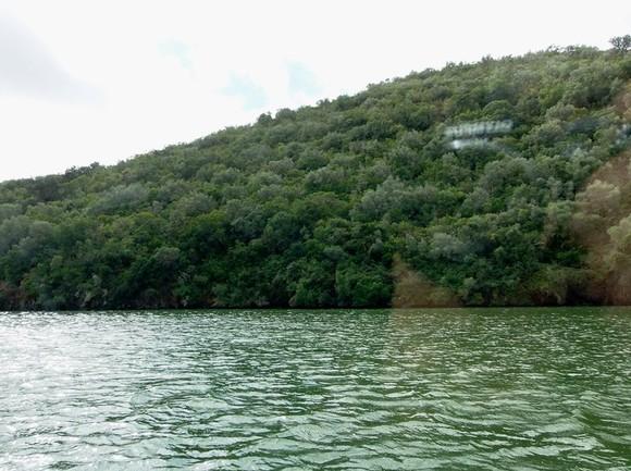 Rio Tejo, margem esquerda.jpg