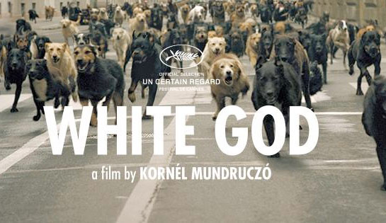 whitegod.jpg
