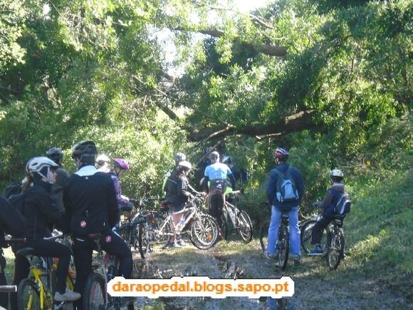GeoBTT_Ecopista_Ponte_Lima_10