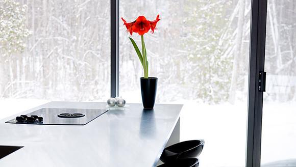 feng-shui-kitchen-flower.jpg