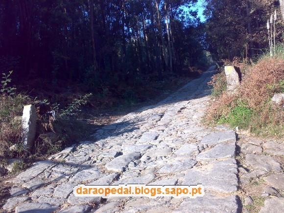 Serra_Canelas_Gaia_22