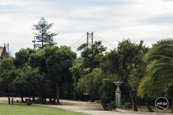 Tapada_da_Ajuda_Lisboa-001381.jpg