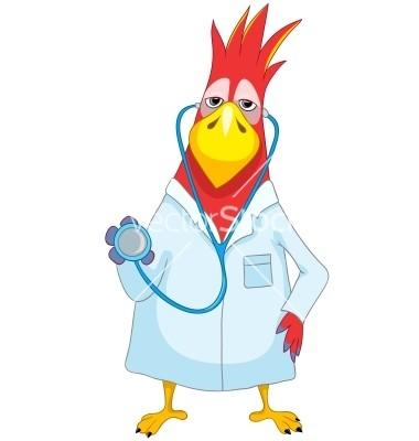 funny-parrot-doctor-vector-904675.jpg