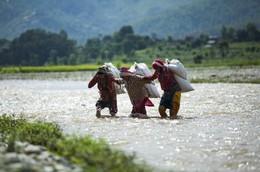 NEPAL VILLAGE DAILY LIFE