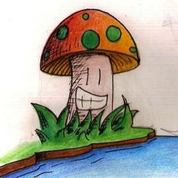 Cogumelo.jpg