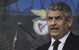 Vieira só quer falar do Benfica