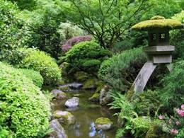 JardimJapones 3.jpg