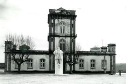 8observatorio_1.jpg