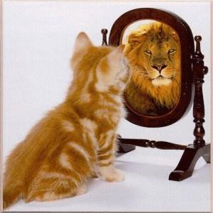 lionmirror4.jpg
