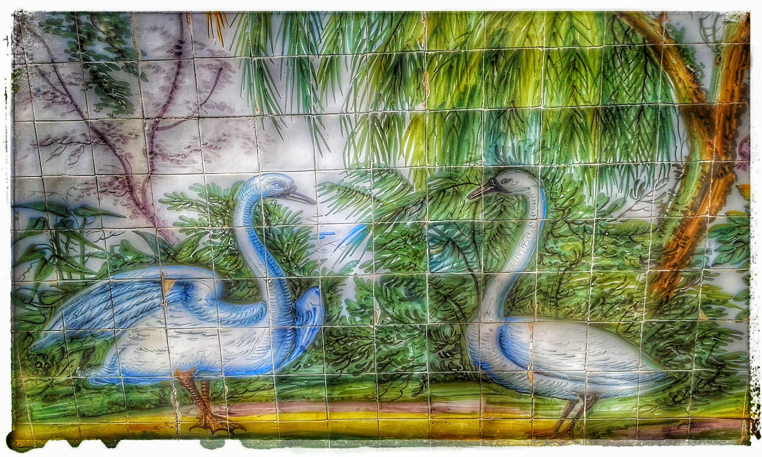 azulejos cisnes belas sintra