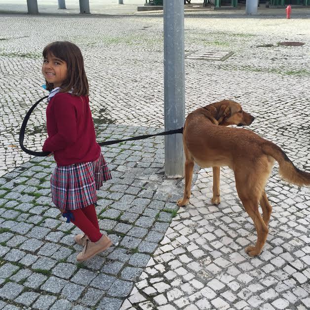 mada e cão.jpg