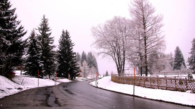 Alpes1_Suiços